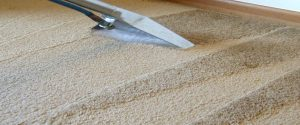 Vacation Home Carpet Cleaning